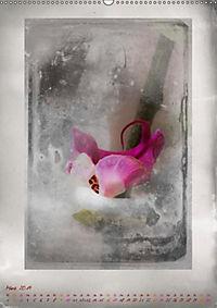 Shabby - Orchidee, Interpretation auf alten Fotoplatten (Wandkalender 2019 DIN A2 hoch) - Produktdetailbild 3