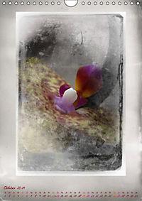 Shabby - Orchidee, Interpretation auf alten Fotoplatten (Wandkalender 2019 DIN A4 hoch) - Produktdetailbild 10