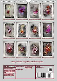 Shabby - Orchidee, Interpretation auf alten Fotoplatten (Wandkalender 2019 DIN A4 hoch) - Produktdetailbild 13