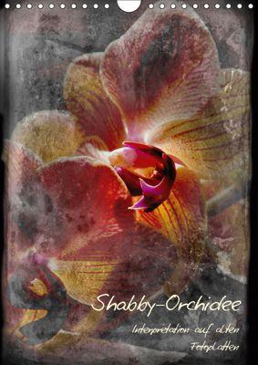 Shabby - Orchidee, Interpretation auf alten Fotoplatten (Wandkalender 2019 DIN A4 hoch), Erwin Renken