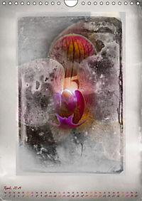 Shabby - Orchidee, Interpretation auf alten Fotoplatten (Wandkalender 2019 DIN A4 hoch) - Produktdetailbild 4