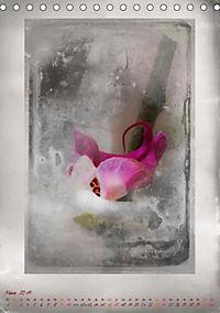 Shabby - Orchidee, Interpretation auf alten Fotoplatten (Tischkalender 2019 DIN A5 hoch) - Produktdetailbild 3