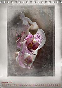 Shabby - Orchidee, Interpretation auf alten Fotoplatten (Tischkalender 2019 DIN A5 hoch) - Produktdetailbild 11