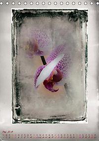 Shabby - Orchidee, Interpretation auf alten Fotoplatten (Tischkalender 2019 DIN A5 hoch) - Produktdetailbild 5