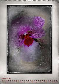 Shabby - Orchidee, Interpretation auf alten Fotoplatten (Wandkalender 2019 DIN A2 hoch) - Produktdetailbild 2