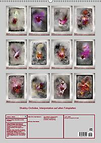 Shabby - Orchidee, Interpretation auf alten Fotoplatten (Wandkalender 2019 DIN A2 hoch) - Produktdetailbild 13
