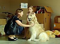 Shadow - Ein Hund zum Verlieben - Produktdetailbild 4