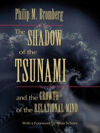 Shadow of the Tsunami, Philip M. Bromberg