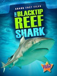 Shark Fact Files: The Blacktip Reef Shark, Sara Green