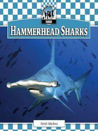 Sharks Set 1: Hammerhead Sharks, Heidi Mathea