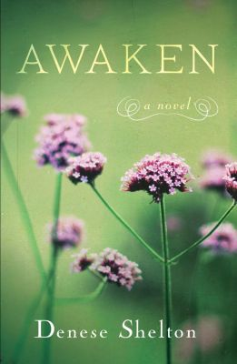 She Writes Press: Awaken, Denese Shelton