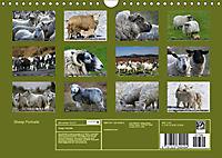 Sheep Portraits (Wall Calendar 2019 DIN A4 Landscape) - Produktdetailbild 13