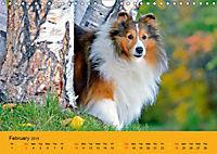 Shetland Sheepdogs (Wall Calendar 2019 DIN A4 Landscape) - Produktdetailbild 2