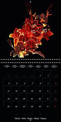 Shimmering drawings (Wall Calendar 2019 300 × 300 mm Square) - Produktdetailbild 3