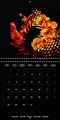 Shimmering drawings (Wall Calendar 2019 300 × 300 mm Square) - Produktdetailbild 1