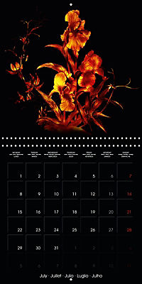 Shimmering drawings (Wall Calendar 2019 300 × 300 mm Square) - Produktdetailbild 7