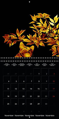 Shimmering drawings (Wall Calendar 2019 300 × 300 mm Square) - Produktdetailbild 11