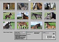 Shire Horse Fohlen (Wandkalender 2019 DIN A3 quer) - Produktdetailbild 13