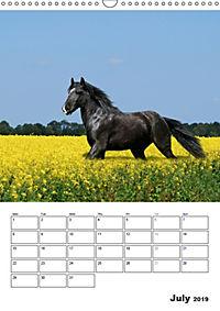 Shire Horses The Gentle Giants (Wall Calendar 2019 DIN A3 Portrait) - Produktdetailbild 7