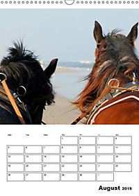 Shire Horses The Gentle Giants (Wall Calendar 2019 DIN A3 Portrait) - Produktdetailbild 8