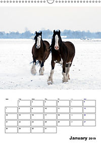 Shire Horses The Gentle Giants (Wall Calendar 2019 DIN A3 Portrait) - Produktdetailbild 1