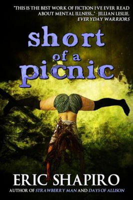 Short of a Picnic, Eric Shapiro