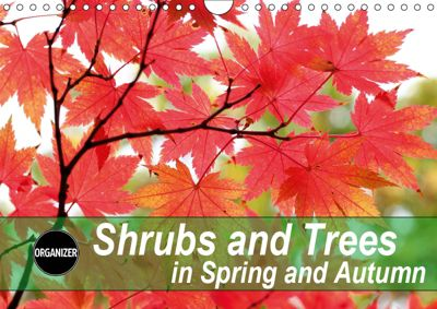 Shrubs and Trees in Spring and Autumn (Wall Calendar 2019 DIN A4 Landscape), Gisela Kruse