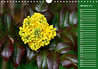 Shrubs and Trees in Spring and Autumn (Wall Calendar 2019 DIN A4 Landscape) - Produktdetailbild 1