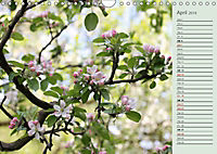 Shrubs and Trees in Spring and Autumn (Wall Calendar 2019 DIN A4 Landscape) - Produktdetailbild 4