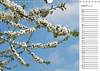 Shrubs and Trees in Spring and Autumn (Wall Calendar 2019 DIN A4 Landscape) - Produktdetailbild 3
