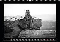 Side-Clicks Amerika in schwarz-weiss (Wandkalender 2019 DIN A3 quer) - Produktdetailbild 12