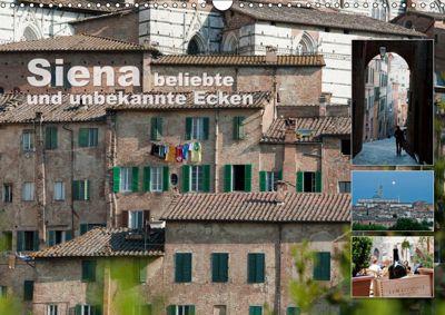 Siena, beliebte und unbekannte Ecken (Wandkalender 2019 DIN A3 quer), Ulrike Gruch