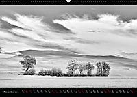 SILBERrausch (Wandkalender 2019 DIN A2 quer) - Produktdetailbild 11