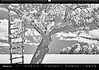 SILBERrausch (Wandkalender 2019 DIN A2 quer) - Produktdetailbild 2
