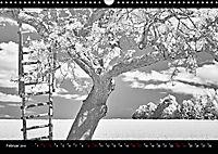 SILBERrausch (Wandkalender 2019 DIN A3 quer) - Produktdetailbild 2
