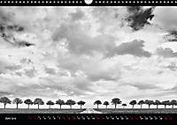 SILBERrausch (Wandkalender 2019 DIN A3 quer) - Produktdetailbild 6