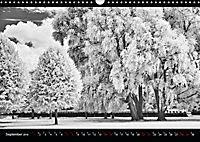 SILBERrausch (Wandkalender 2019 DIN A3 quer) - Produktdetailbild 9