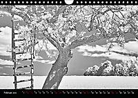 SILBERrausch (Wandkalender 2019 DIN A4 quer) - Produktdetailbild 2