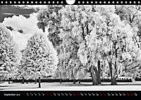 SILBERrausch (Wandkalender 2019 DIN A4 quer) - Produktdetailbild 9