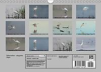 Silberreiher - elegante Jäger (Wandkalender 2019 DIN A4 quer) - Produktdetailbild 13
