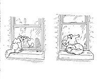 Simons Katze - Der Zaunkönig - Produktdetailbild 5