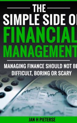 Simple Side Of Business Management: The Simple Side Of Financial Management, Jan H Pieterse