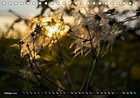 simply the best - das Beste von PhotomasAT-Version (Tischkalender 2019 DIN A5 quer) - Produktdetailbild 10