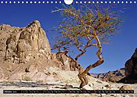 Sinai - Landschaft aus Fels und SandCH-Version (Wandkalender 2019 DIN A4 quer) - Produktdetailbild 10