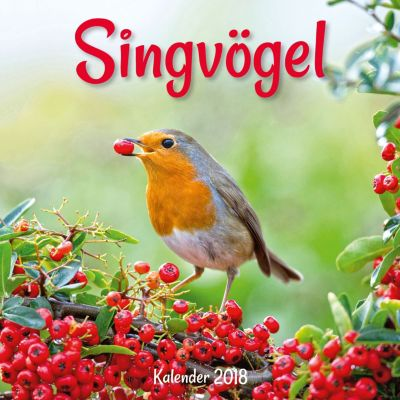 Singvögel Broschurkal. 2018