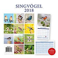 Singvögel Broschurkal. 2018 - Produktdetailbild 15