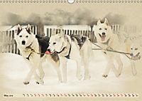 Sledgedogs 2019 / UK-Version (Wall Calendar 2019 DIN A3 Landscape) - Produktdetailbild 5