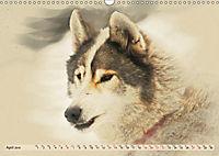 Sledgedogs 2019 / UK-Version (Wall Calendar 2019 DIN A3 Landscape) - Produktdetailbild 4