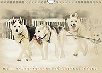 Sledgedogs 2019 / UK-Version (Wall Calendar 2019 DIN A4 Landscape) - Produktdetailbild 5