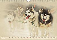 Sledgedogs 2019 / UK-Version (Wall Calendar 2019 DIN A4 Landscape) - Produktdetailbild 7